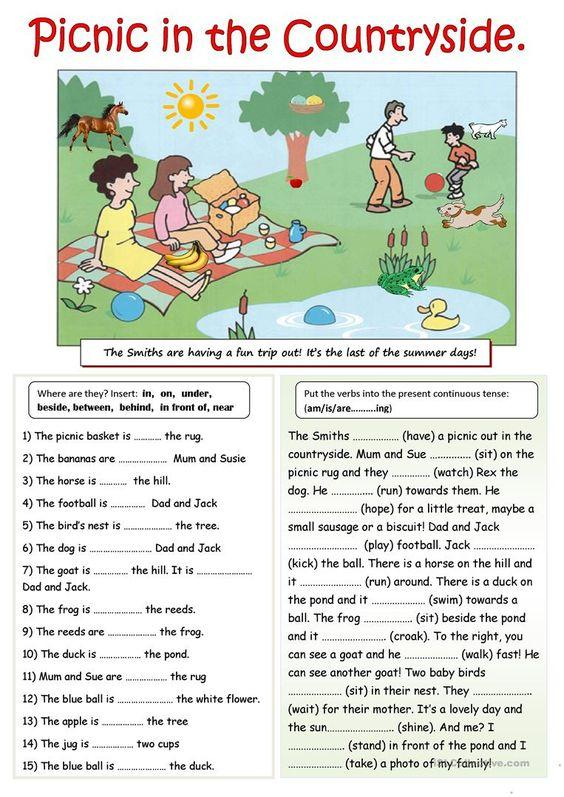 Grammar corner  Picnic in the Countryside  Worksheet