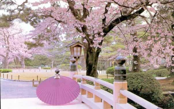 3 Amazing Hidden-Gem Travel Destinations in Japan